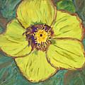 Bloom I by Bernadette Robertson