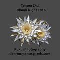 Bloom Night T Shirt by Dan McManus