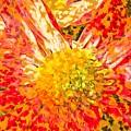 Bloom by Susan Maxwell Schmidt