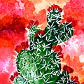 Bloomin Cactus by Maureen Janssens