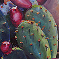 Blooming Cacti  by Marjory Wilson