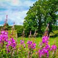 Blooming Fireweeds In Summer by James Truett