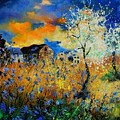 Blooming Trees by Pol Ledent