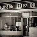Blossom Dairy Co. by T Mooney