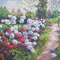 Blossom Lane by David Lloyd Glover