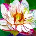 Blossom Lotus Flower by Jeelan Clark
