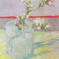 Blossoming Almond Branch In A Glass 1888 by Vincent Van Gogh