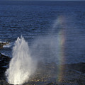 Blowhole At Poipu by Stan and Anne Foster