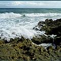 Blowing Rocks Preserve Triptych by D Hackett
