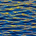 Blue And Gold by Steve Gadomski