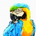 Blue And Yellow Macaw by Chris Butler