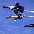 Blue Angel Roll by Patrick Dablow