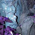 Blue Angel by Shirley Sykes Bracken
