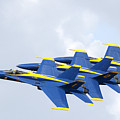 Blue Angels by Bill Linhares