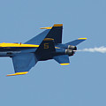 Blue Angels F/a-18 Hornet by Robert Banach