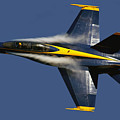 Blue Angels II by Gigi Ebert