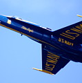 Blue Angels by Sonja Anderson
