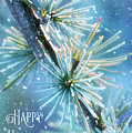 Blue Atlas Cedar Winter Holiday Card by Anita Pollak