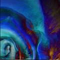 Blue by Barbara Berney