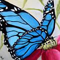 Blue Beauty by Robert Schippnick