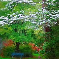 Blue Bench In Park by Donna Bentley