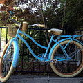Blue Bike by David Stone