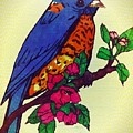 Blue Bird by MaryLee Parker