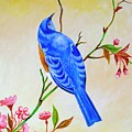 Blue Bird On Cherry Blossom  by Tc Tender Touch