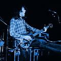 Blue Bullfrog Blues by Ben Upham