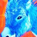 Blue Burrito by Melinda Etzold