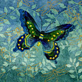 Blue Butterfly by Hailey E Herrera