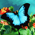 Blue Butterfly On Lantana Plant Oil Painting by Elaine Plesser