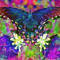 Blue Butterfly Pop by Jeffrey Todd Moore