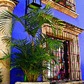 Blue Casa With Fern by Mexicolors Art Photography