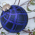 Blue Christmas Ball On Heather With Fresh Snow by William Freebilly photography