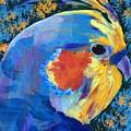 Blue Cockatiel by Donald J Ryker III