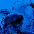 Blue Cow by Modern Art