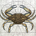 Blue Crab by Charles Harden
