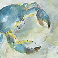 Blue Crab. by Christine Munch