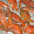 Blue Crabs by Mary Watson