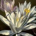 Blue Damselfly by Gary Bruton