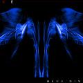 Blue Divine by Jonathan Ellis Keys