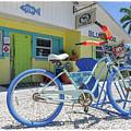 Blue Dog Matlacha Island Florida by Edward Fielding