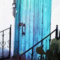 Blue Door by Alyssa Fleming
