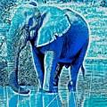 Blue Elephant by Deb Z