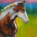 Blue-eyed Paint Horse Oil Painting Print by Svetlana Novikova