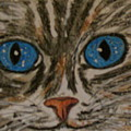 Blue Eyed Tiger Cat by Kathy Marrs Chandler