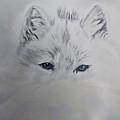 Blue Eyes by Maris Sherwood