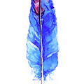 Blue Feather  by Gallery Hermana