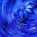 Blue Floral Swirl by Bob Coates
